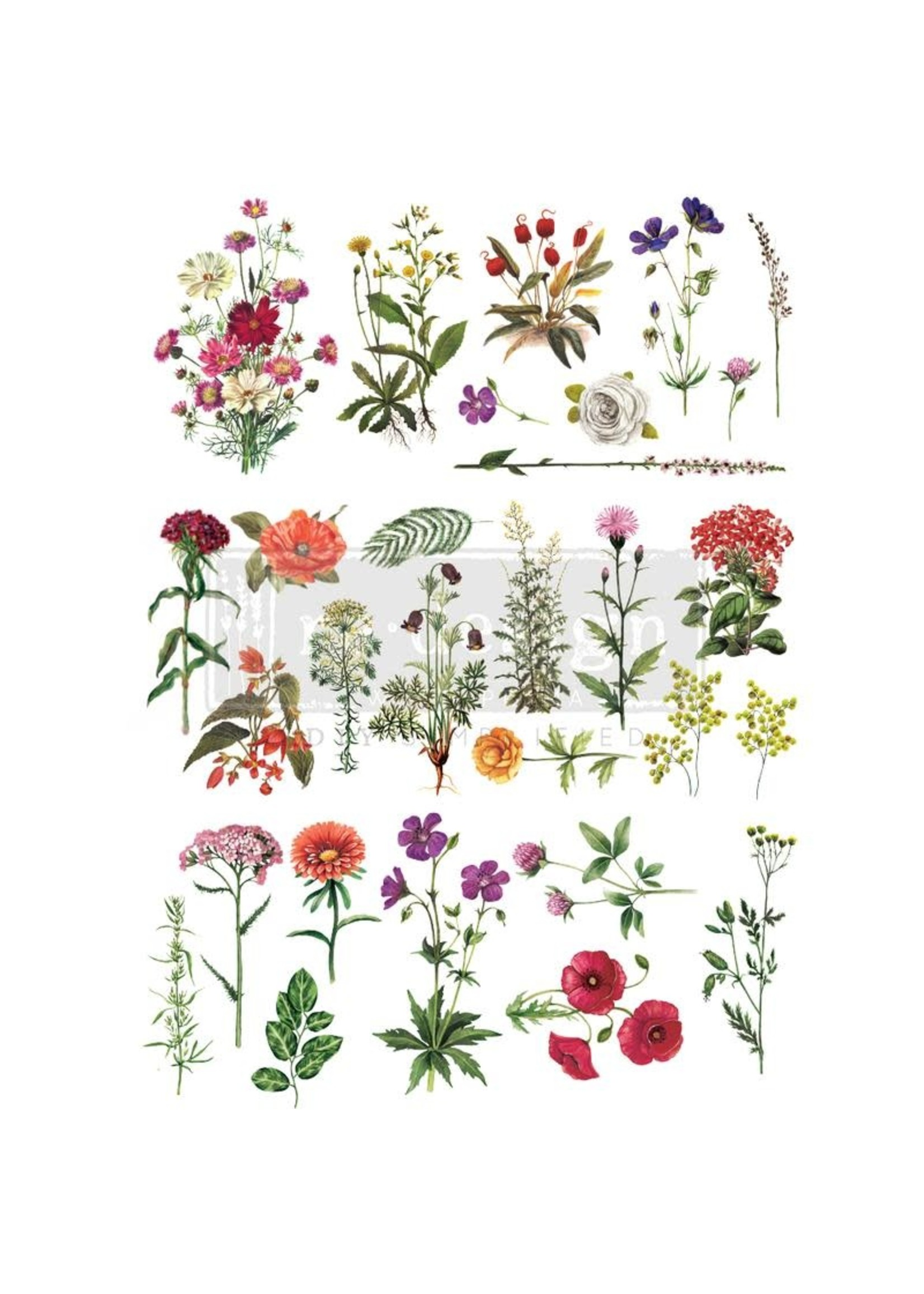 Re-Design with Prima® Floral Collection Re·Design with Prima® Transfers