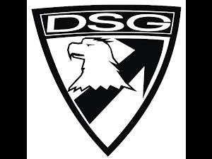DSG ARMS