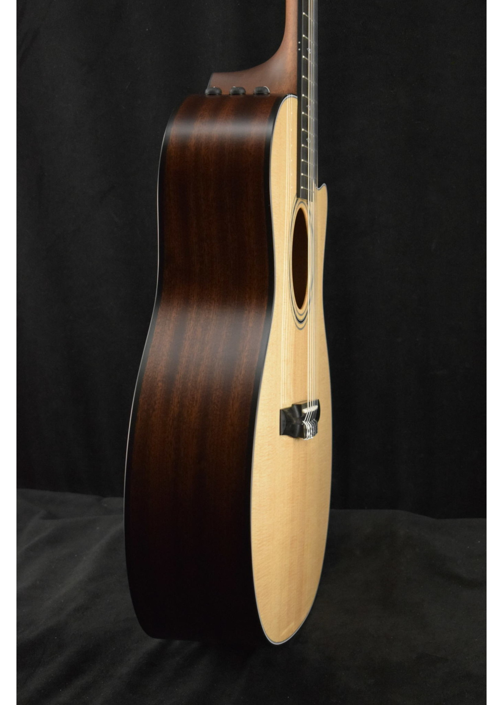 Taylor Taylor 314ce-N Nylon-String