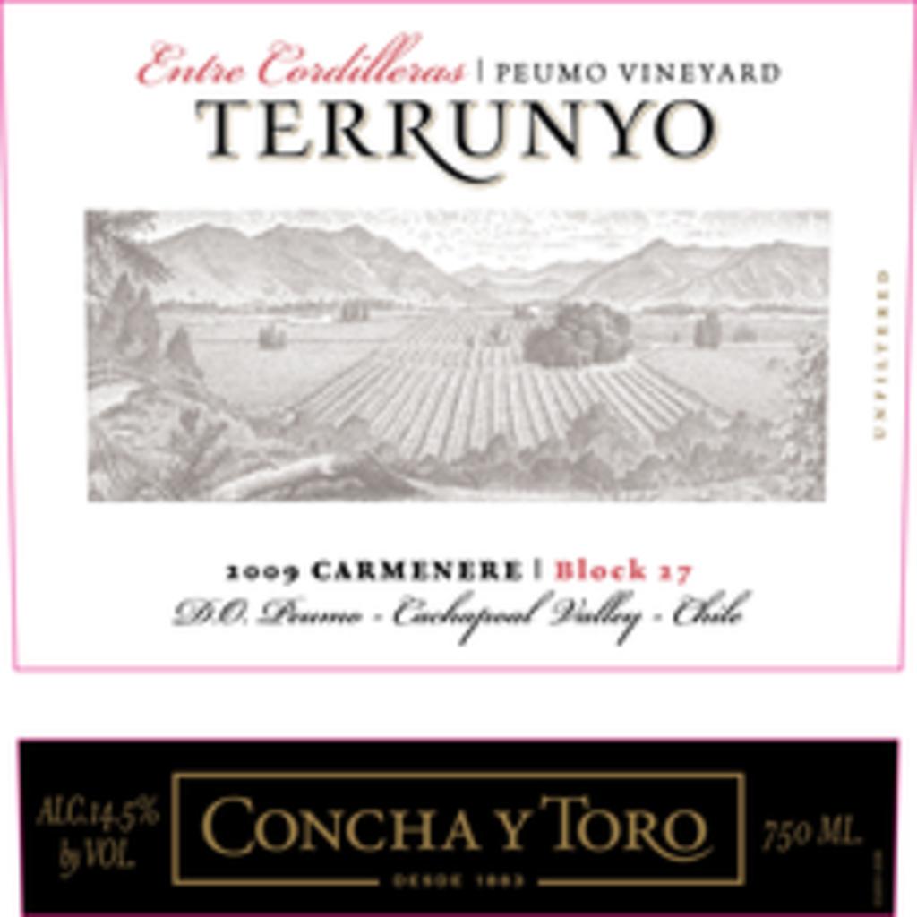 Concha Y Toro Terrunyo Block 27 Carmenere 2018