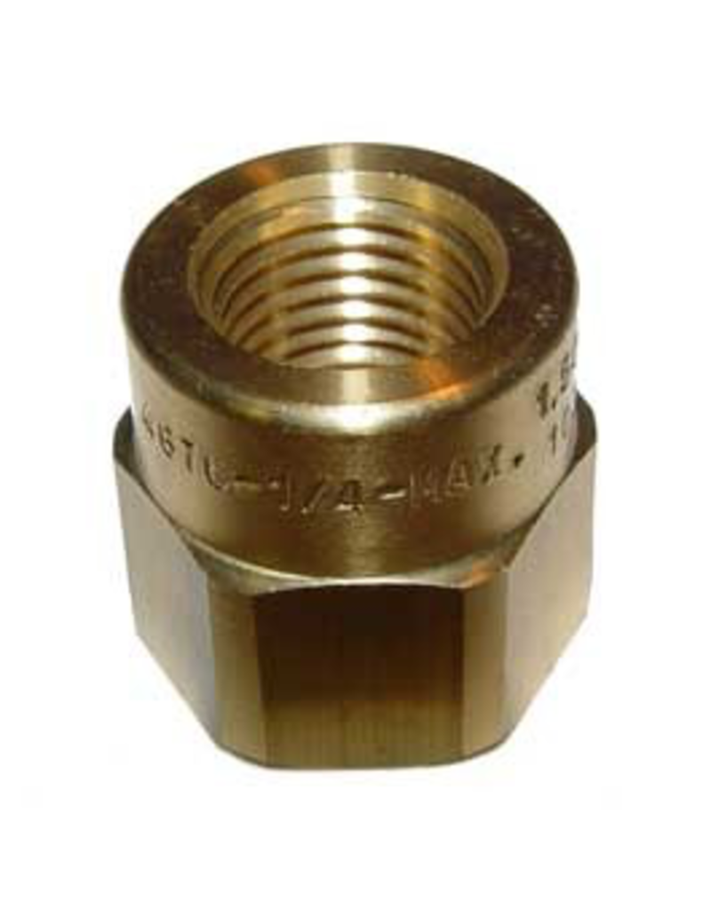 """Spraying Systems Adapter - Jet Strainer 1/4"""" FPT"""