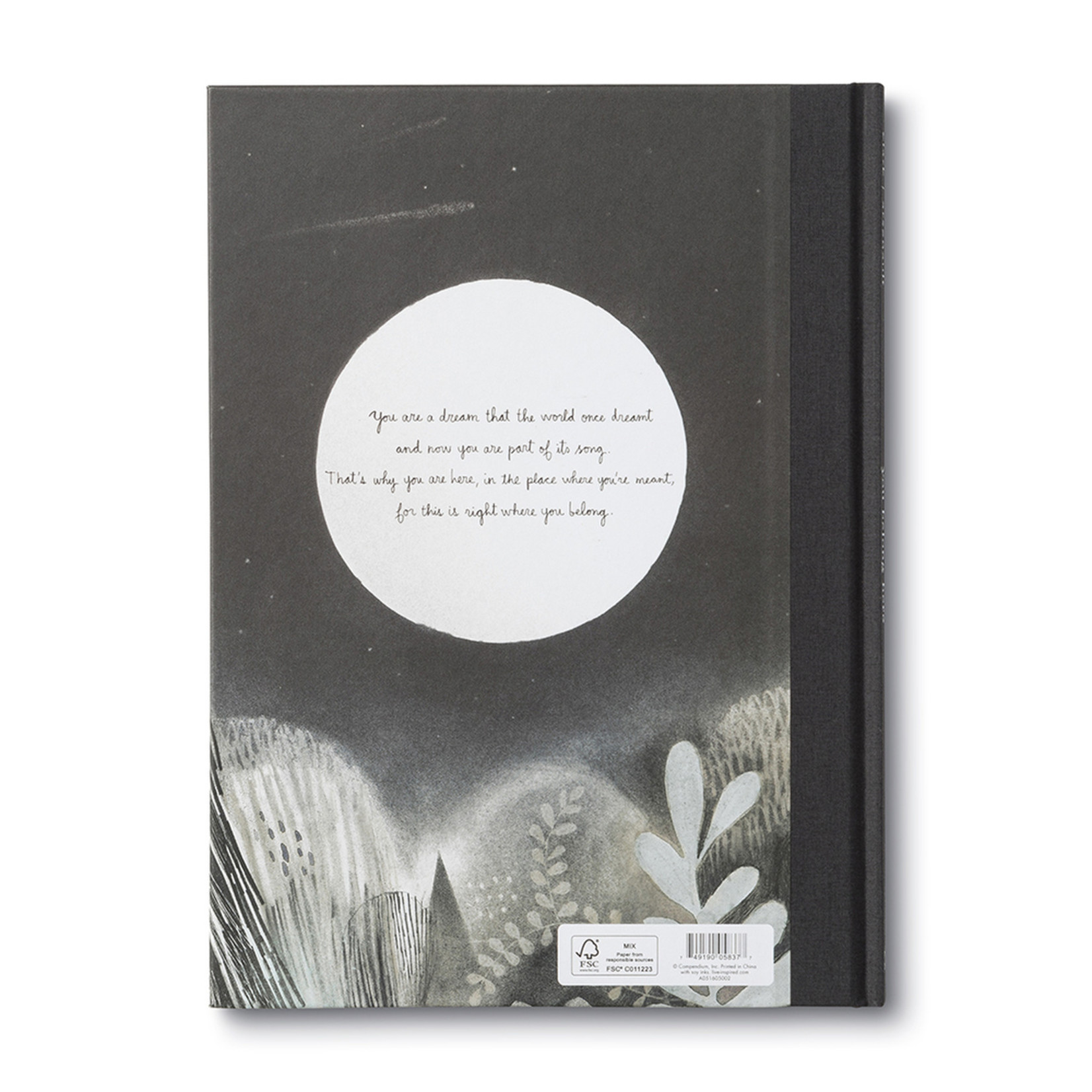 love, june You Belong Here Book