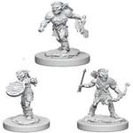 WizKids/Neca Nolzur's Marvelous Goblins