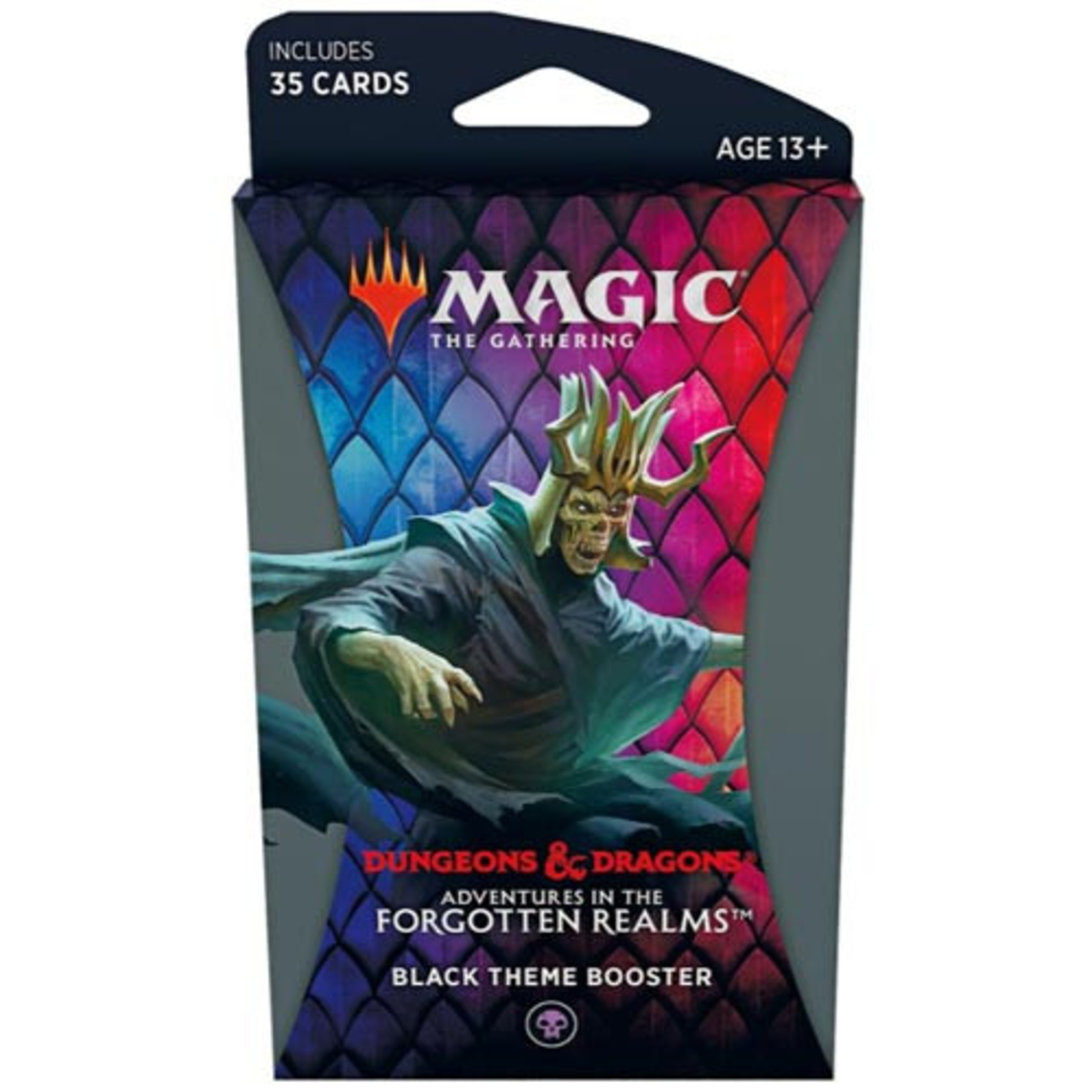 Wizards of the Coast Adventures in the Forgotten Realms Theme Booster