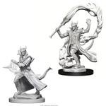 WizKids/Neca Nolzur's Tiefling Male Sorcerer