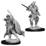 WizKids/Neca Nolzur's Elf Male Rogue