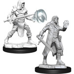 WizKids/Neca Nolzur's Multiclass Fighter + Wizard Male