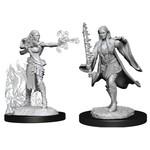 WizKids/Neca Nolzur's W13 Multiclass Warlock + Sorcerer Female