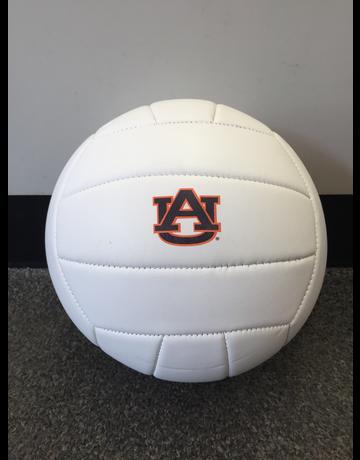 Baden Auburn Volleyball
