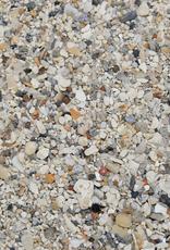 Dune Jewelry Beach Bangle - Dolphin - South Beach Florida