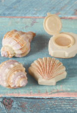 Shell Coconut Scented Lip Gloss