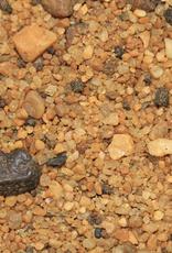 Dune Jewelry Beach Bangle - Crab Shape - Chesapeake Bay