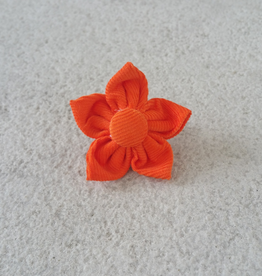 Hot Dog Flower - Orange - Small