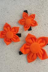 Hot Dog Flower - Orange - Large