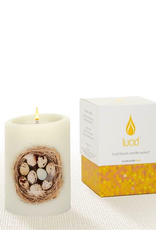 Lucid Candle Nest Natural Pillar Candle - 3x4
