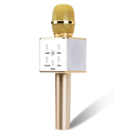 Karaoke Microphone Speaker - Gold