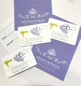 Breeze Day Spa WEB Breeze Day Spa Gift Card - Massage - 30 minutes