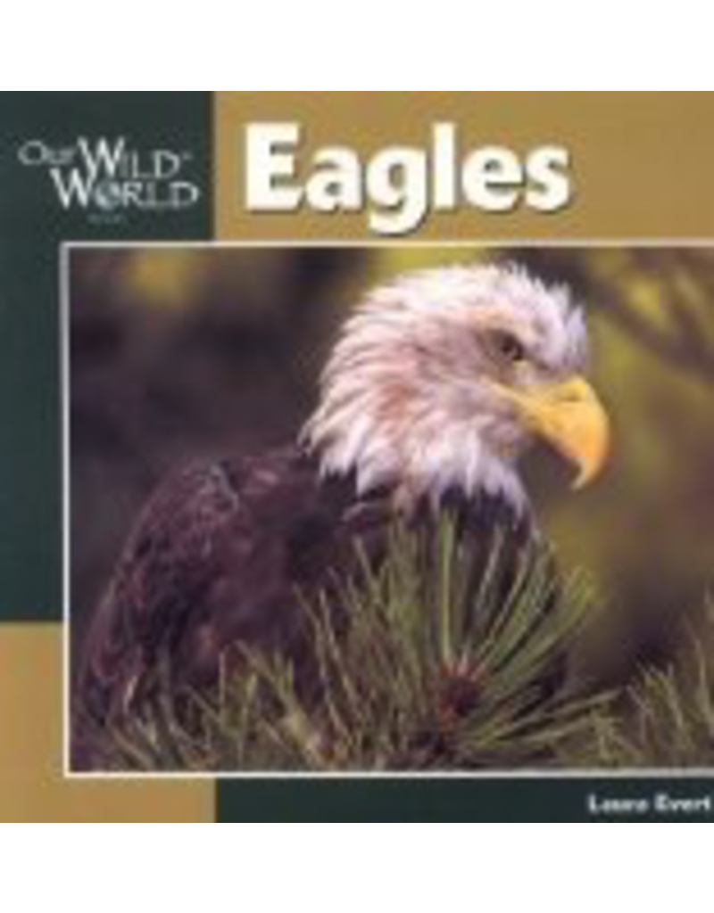 Todd Communications Our Wild World Eagles