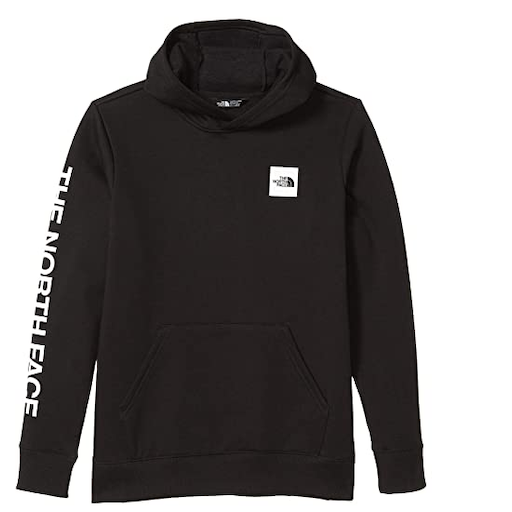 THE NORTH FACE YOUTH LOGOWEAR PULLOVER HOODIE - BB1112820
