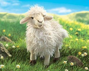 FOLKMANIS LONGWOOL SHEEP