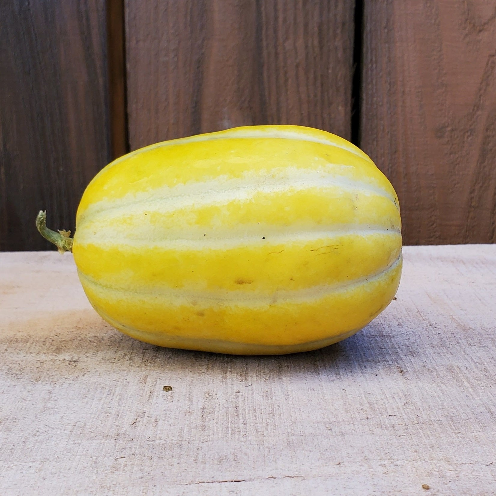 Melon Coréen