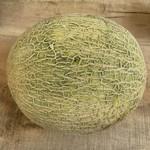 Cantaloup Hollandais (Gros)