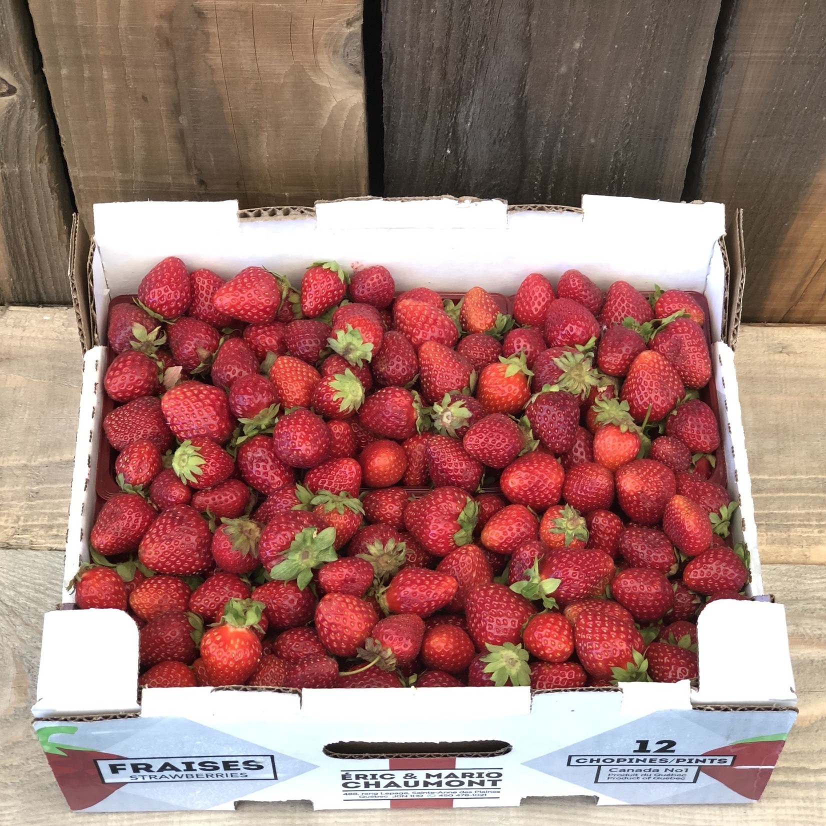 1/2 crêtes de fraises du Québec