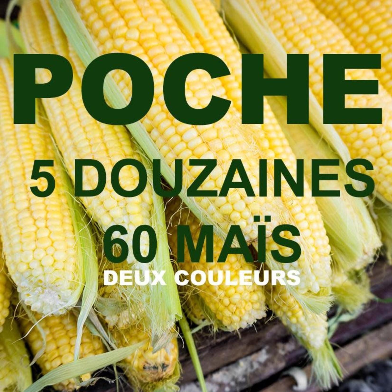 Poche de maïs 2 couleurs
