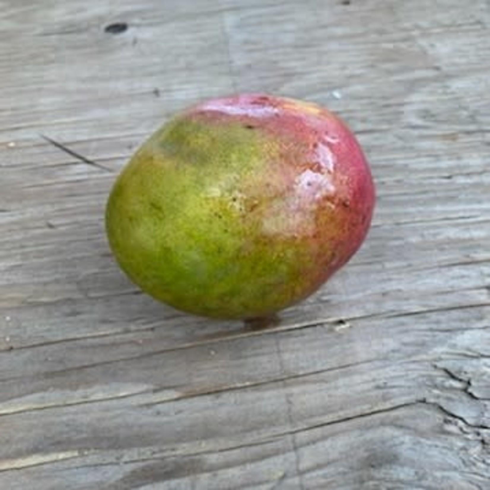 Mangue (unité)