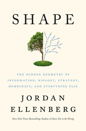 BODV Shape: The Hidden Geometry of Information, Biology, Strategy, Democracy, and Everything Else