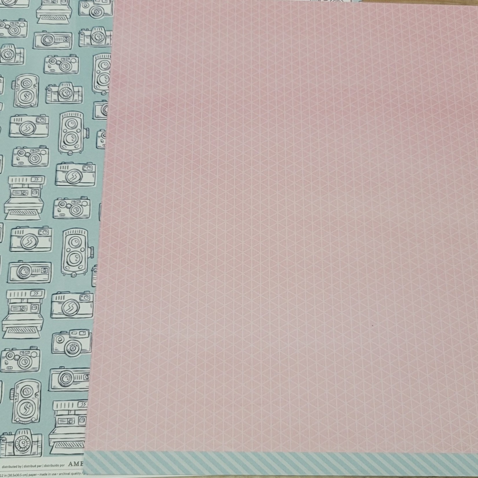 American Crafts American Crafts - amy tangerine better togeher 12''x12'' double-sided page -peanut butter & jelly