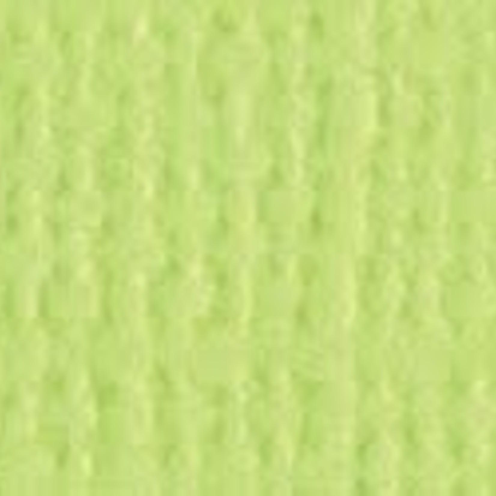"Bazzill Bazzill 12"" x 12"" Canvas Cardstock Limeade"