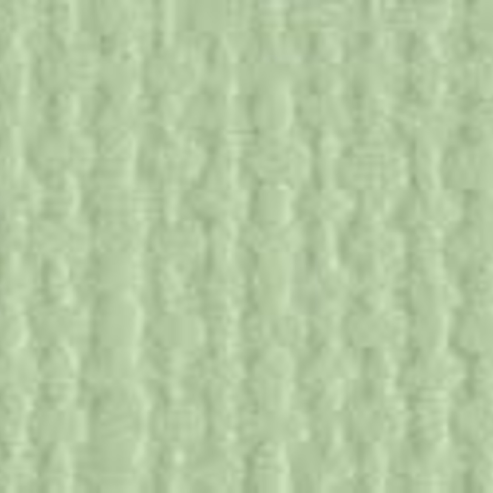 "Bazzill Bazzill 12"" x 12"" Canvas Cardstock Aloe Vera"