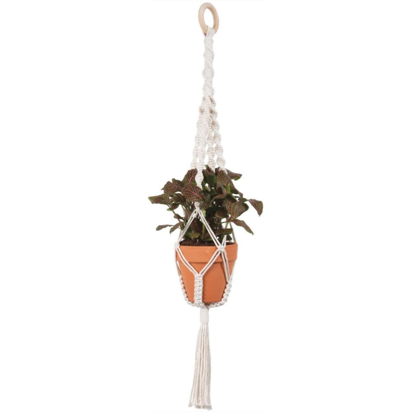 Macrame Plant Hanger Kit-4 Twists