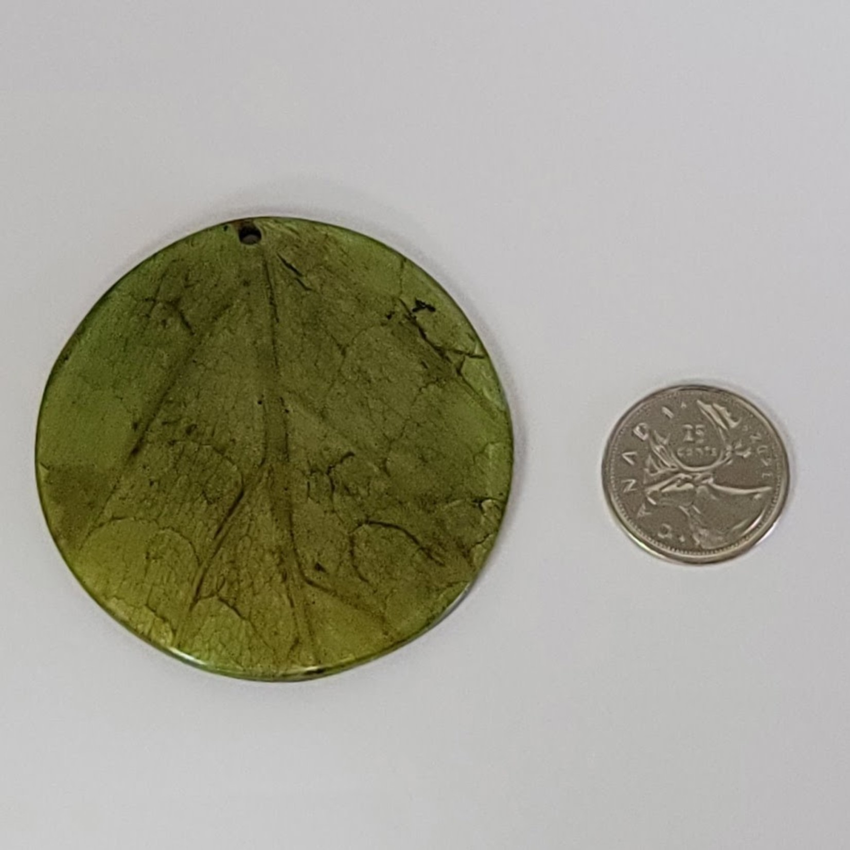 Pendants - Coconut back round 62mm leaf inlay - Green