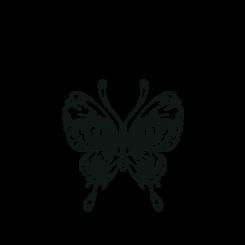 Papillon & Company