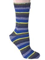 Berroco Berroco Comfort Sock Yarn #1832 Portree