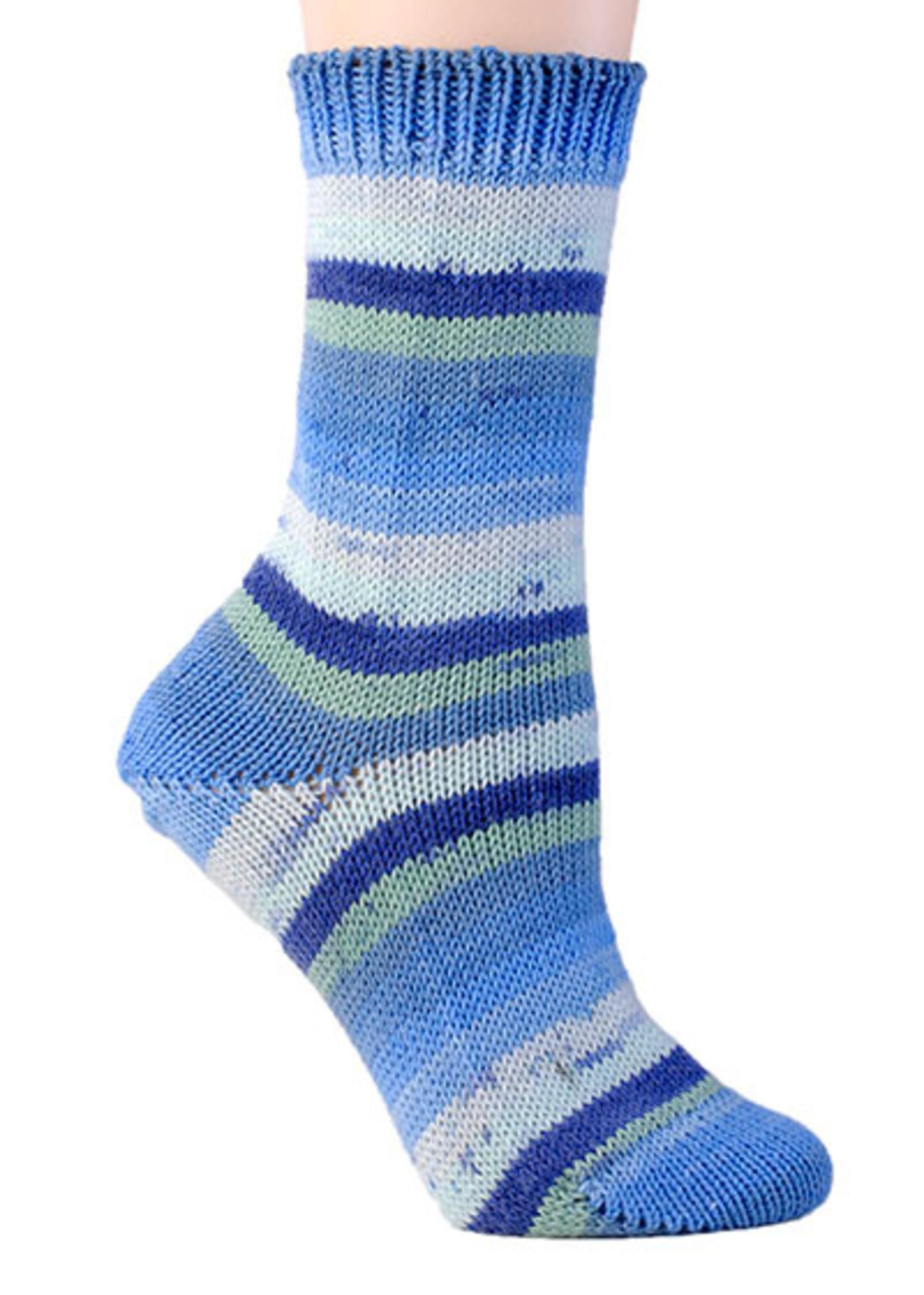 Berroco Berroco Comfort Sock Yarn #1827 Fiordland