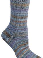 Berroco Berroco Comfort Sock Yarn #1813 Southland