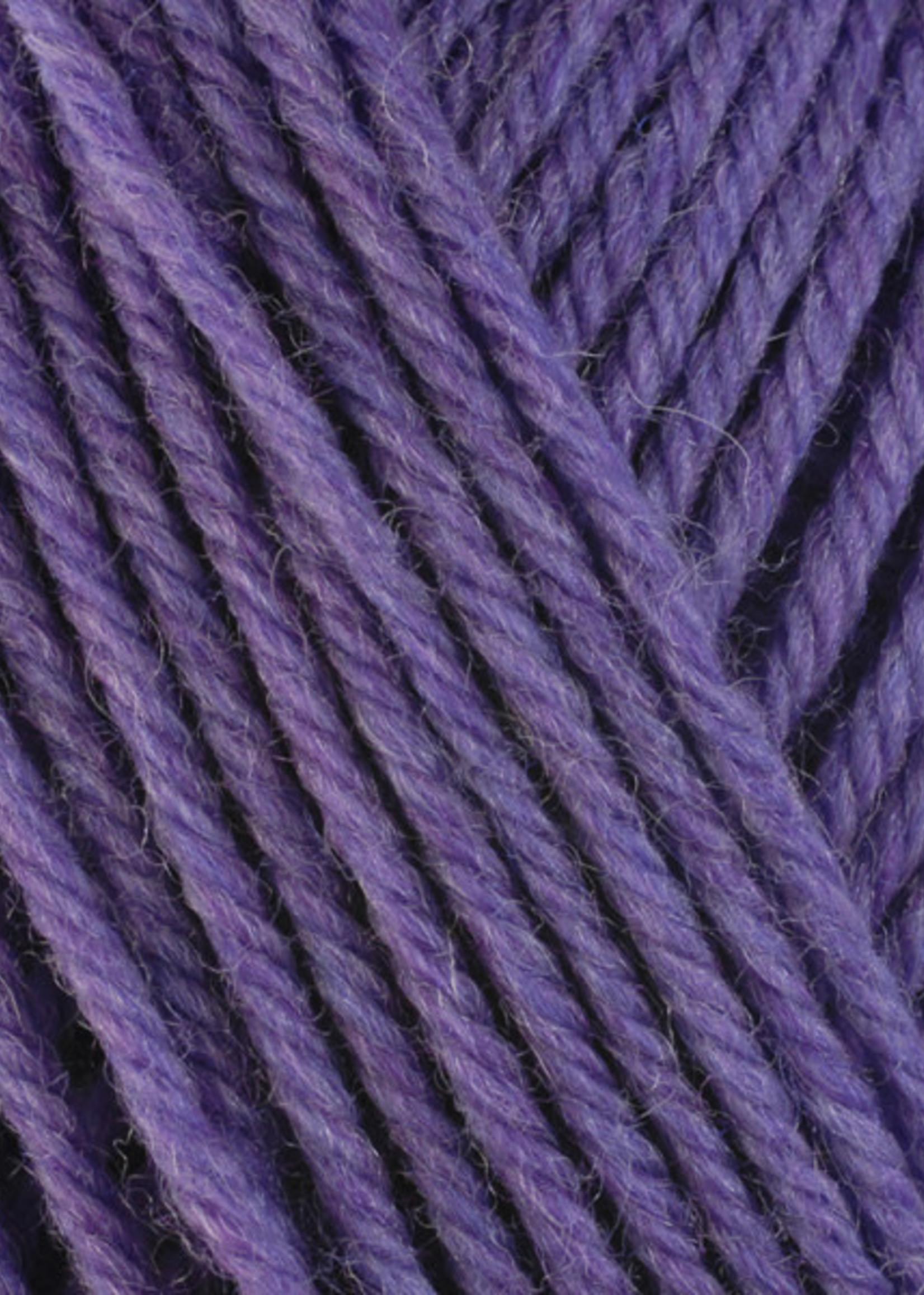 Berroco Berroco Ultra Wool 33146 Aster