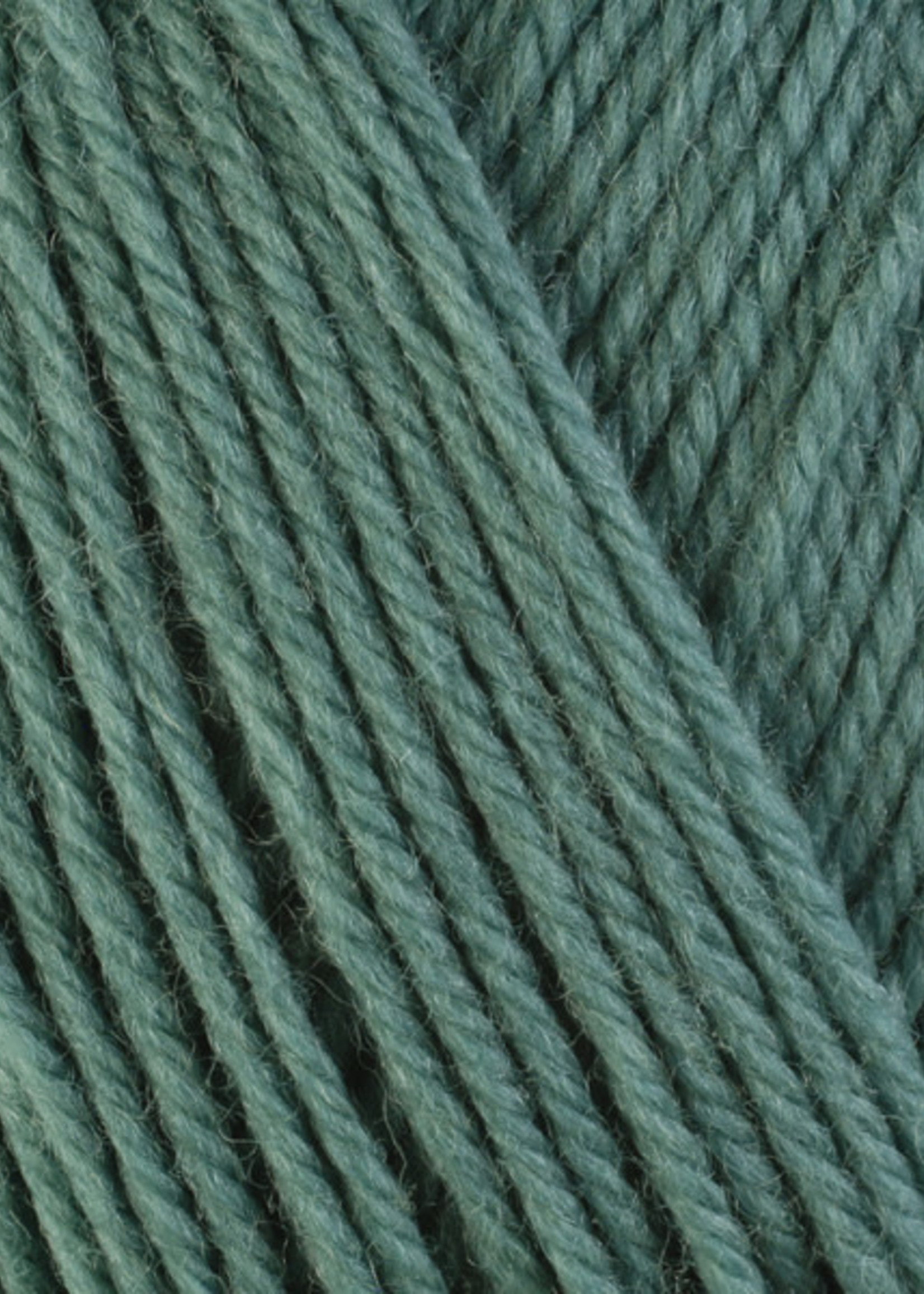 Berroco Berroco Ultra Wool 3324 Sage