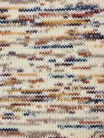 Berroco Berroco Ultra Wool Handpaint 33302 Cider
