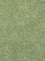 Bhedawool Bhedawool #492 Dark Leaf Green