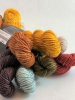 Julie Asselin Julie Asselin Leizu DK Bundle - Colour Group #1