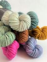 Julie Asselin Julie Asselin Leizu DK Bundle - Colour Group #10