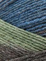 Rico Yarns Rico Superba Bamboo Sock Yarn - #11 Olive Green Mix