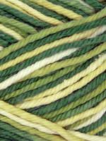 Estelle Yarns Sudz Tonal Cotton #53919 Forest