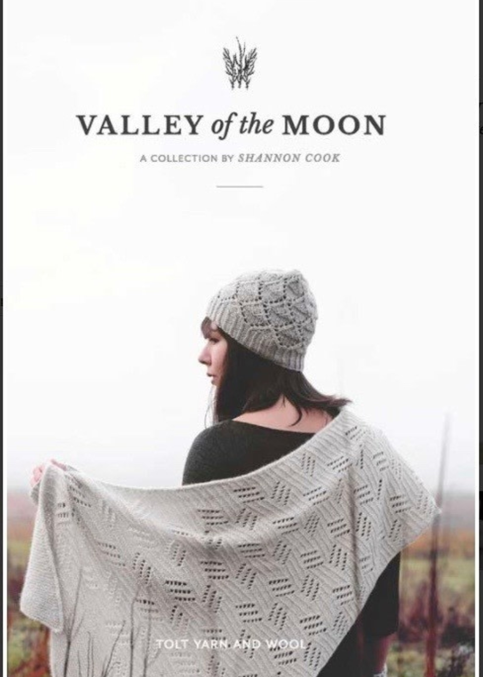 Valley of the Moon by Shannon Cook