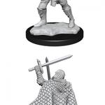 Wizkids Figurine - Male Fighter Elf