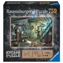 Escape Puzzle: The Forbidden Basement